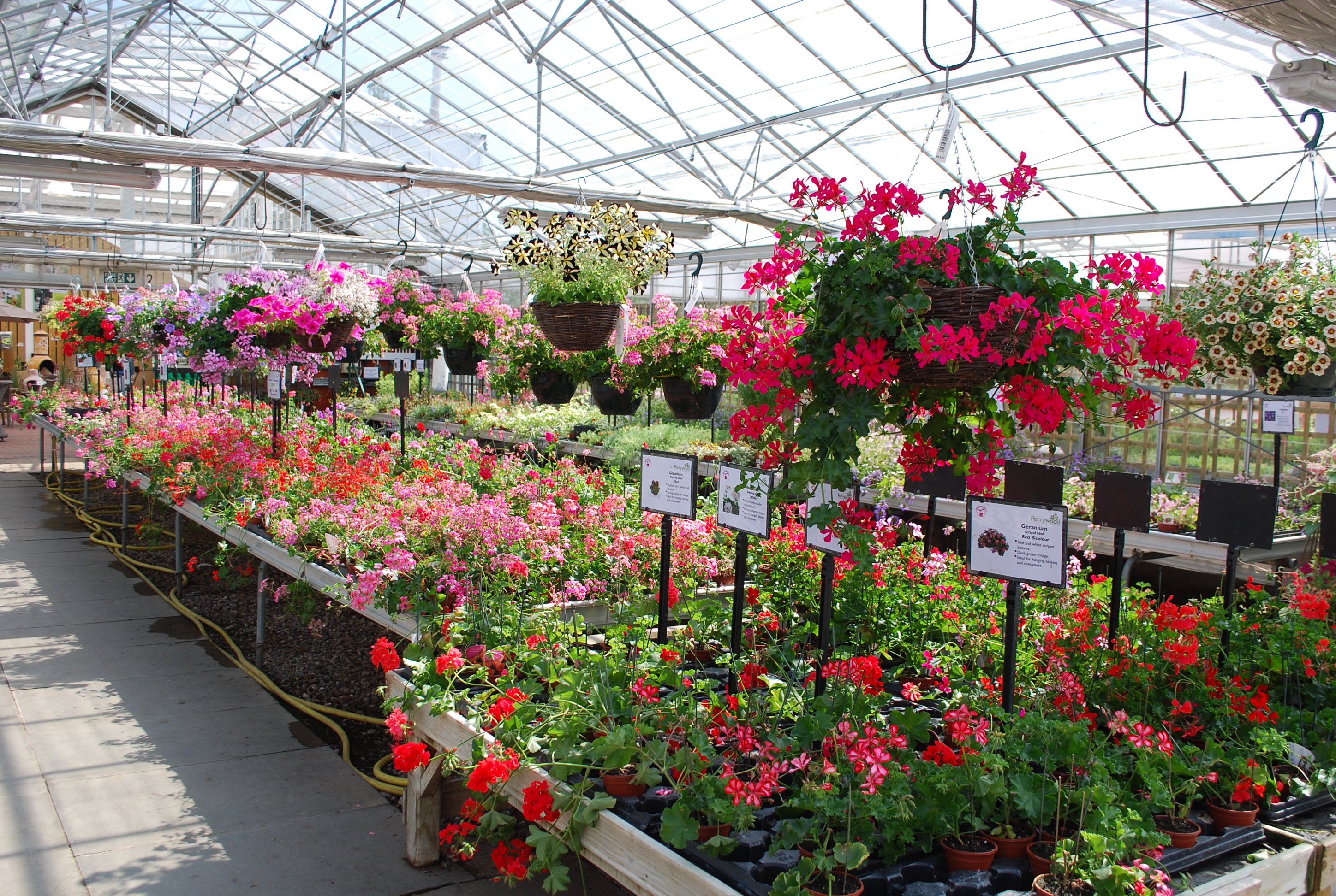 Garden Centre: Perrywood Garden Centre & Nurseries
